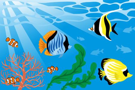 水中、熱帯の魚や海の生活