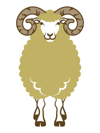 year of sheep: Sheep front view-Clip art