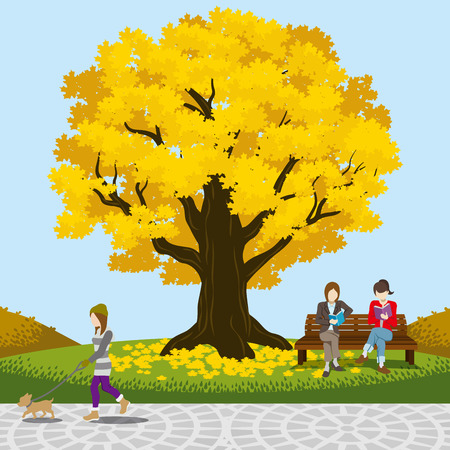 Big tree in the Autumn park Vector