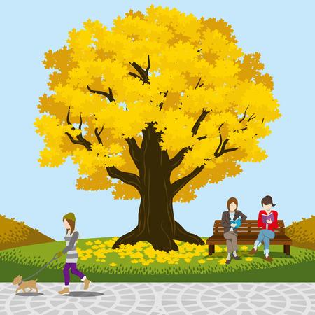 autumn park: Big tree in the Autumn park Illustration