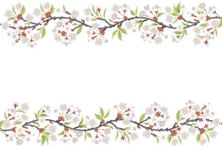 flower blooming: Cherry Blossom Branch frame