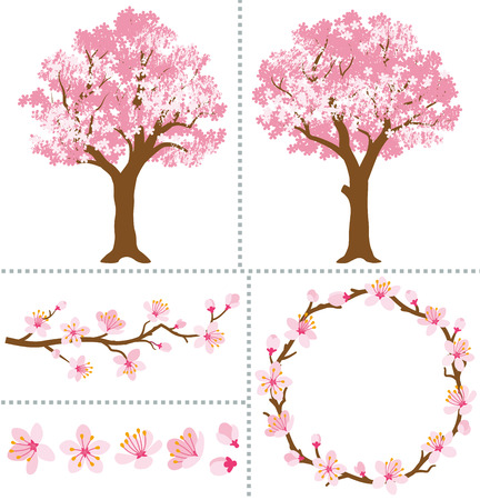 Cherry Blossoms for Design Elements Vectores