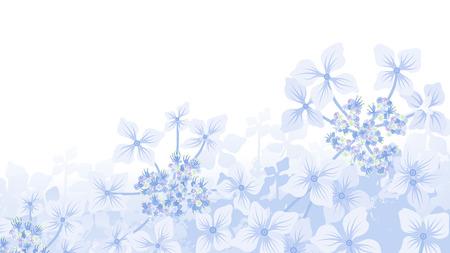 decor: Hydrangea Background