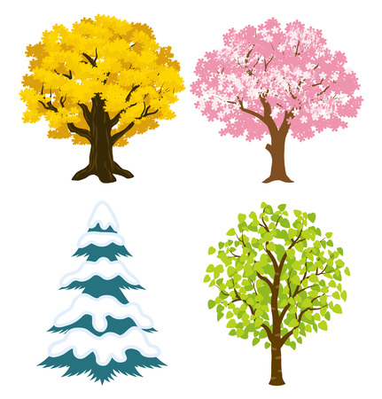 winter cherry: Four seasons trees Illustration