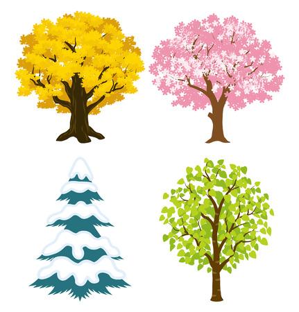 winter cherry: Four seasons trees Illustration