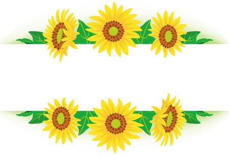 sunflowers: Sunflower frame Illustration