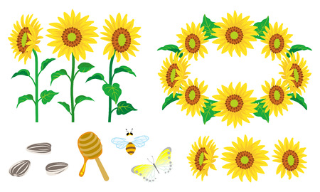 Sunflower Decoration set