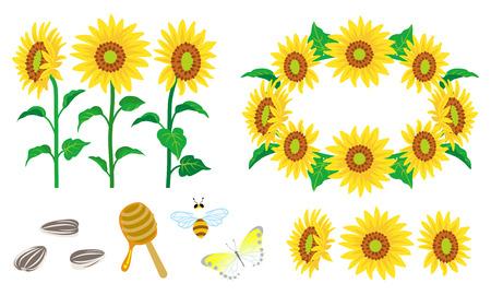 Sunflower Decoration set Vector