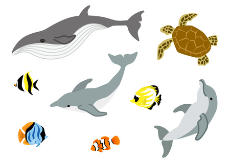 and marine life: Marine life set Illustration
