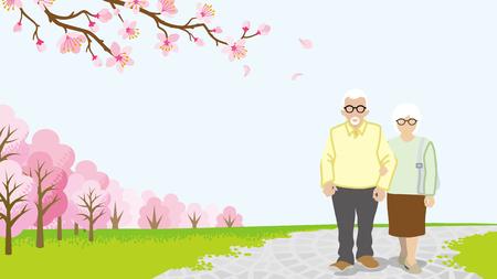 senior couple: Walking Senior couple among full bloom cherry trees Illustration