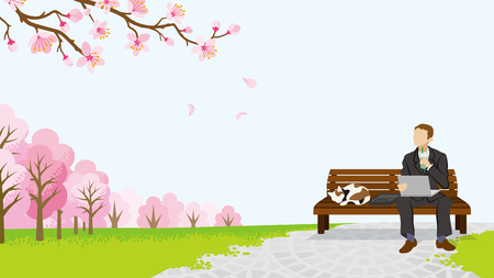 stray: Relax Businessman among the cherry trees