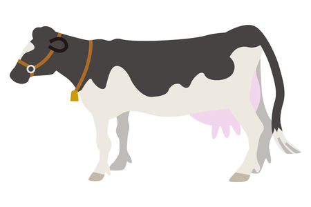 cattle: Dairy Cattle Illustration