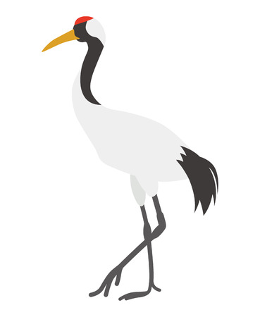crowned: Japanese Crane Illustration