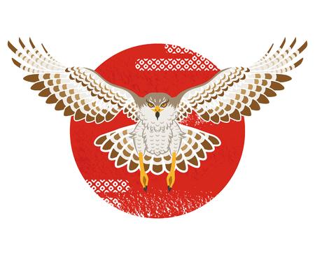hawk: Flying Hawk with Sun