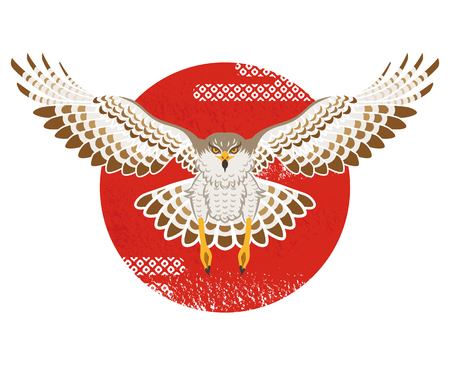 halcones: Vuelo del halcón con Sun