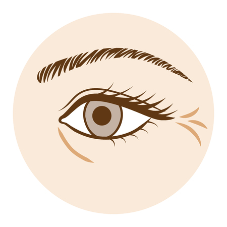 Eye Wrinkle - Body part,Front view 向量圖像