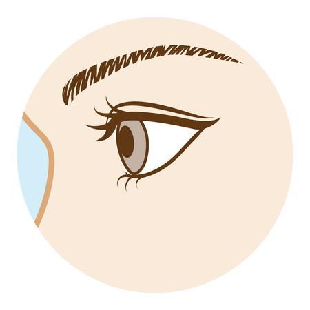 目 - 体の部分、サイド ビュー
