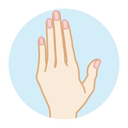 Female Clean hand -Front view Illustration
