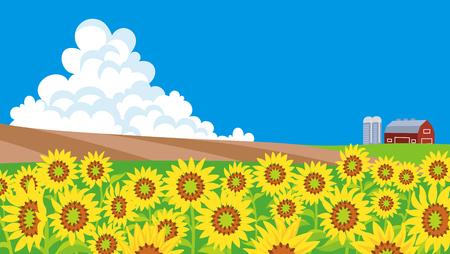 ひまわり畑の風景 写真素材 - 79136723