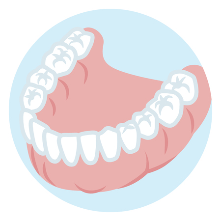 下の歯顎 - 健康