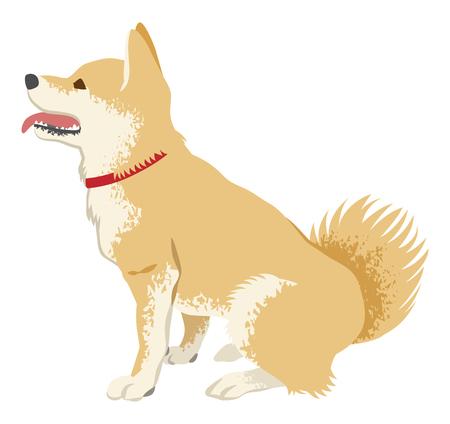 柴犬クリップアート-サイドビュー、口を開いた