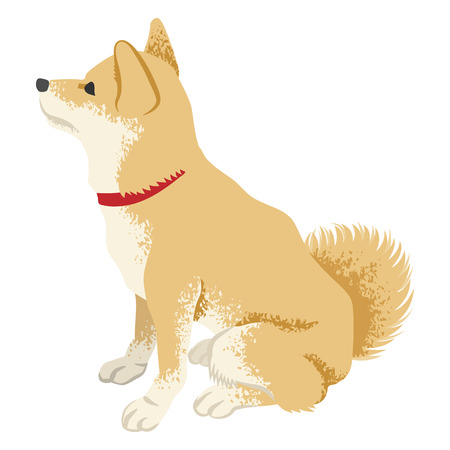 Shiba inu Clip art -Side view, Looking up