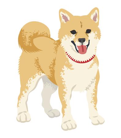 柴犬クリップアート - 立っている、口を開いた  イラスト・ベクター素材