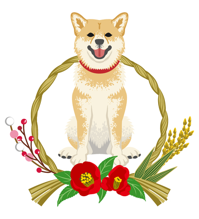 Shiba inu into the Japanese wreath decoration -Front view 版權商用圖片 - 83586469