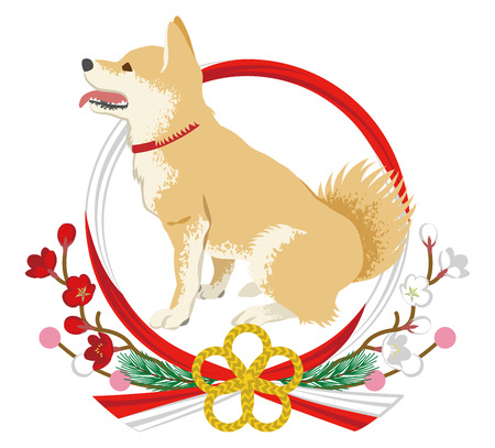 Shiba inu into the Japanese wreath decoration -Side view, Mouth opened in full length. Stock Illustratie