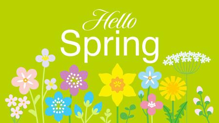 """Aufgereiht bunte Wildblumen, einschließlich der Worte """"Hello Spring"""" - grüner Hintergrund color Vektorgrafik"""
