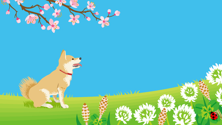 Dog in the Spring nature 矢量图像