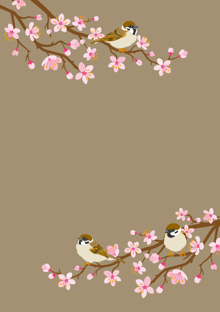 Small birds perch on cherry blossom branch -House Sparrow, Vertical layout