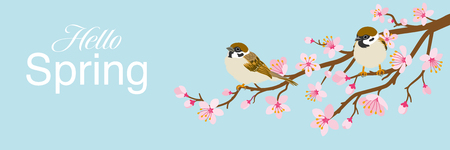 """Two small birds perch on cherry blossom branch, including words """"Hello Spring -House Sparrow, Header ratio"""