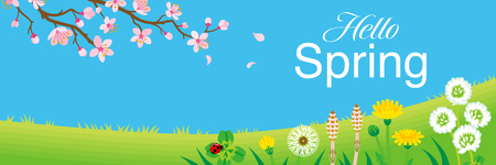 """Cherry blossom branch and Wildflowers in the Spring grassland, including words """"Hello Spring"""