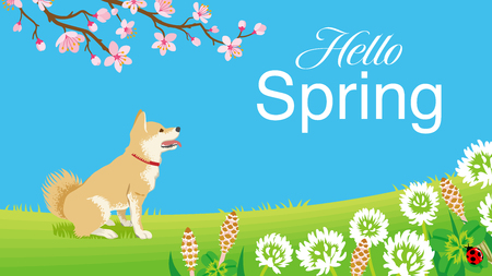 """Dog in the Spring nature, including words """"Hello Spring"""