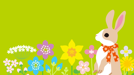 Easter bunny in the spring flower bed -green color background, copy space layout design