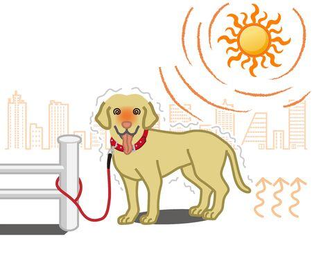 Perro sufriendo por atado a una valla en un caluroso día de verano - Arte conceptual de golpe de calor