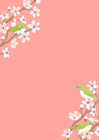 Three little birds perching on Cherry blossom twigs, vertical layout Illustration