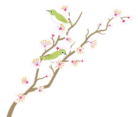 Cherry blossom twig with little green bird - two animals Illustration