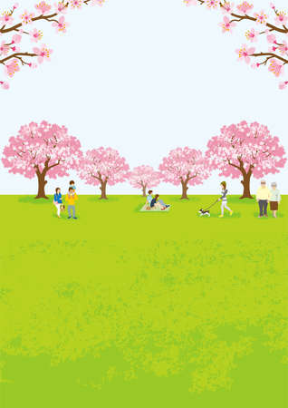People enjoying cherry blossom viewing - Vertical ratio Vector Illustration