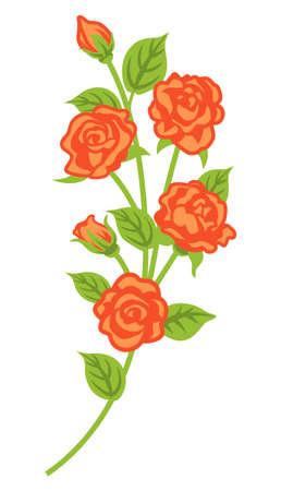 Apricot color rose decoration - curve line