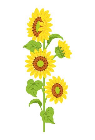 Sunflower decoration - straight line
