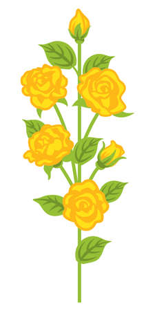 Yellow rose flower decoration - straight line 向量圖像