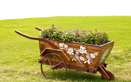wheelbarrow: Flower cart. Stock Photo