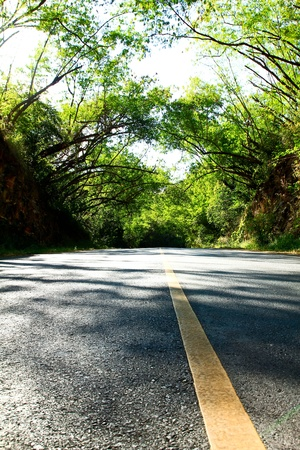 Roads leading to success in a wide range. Stock Photo