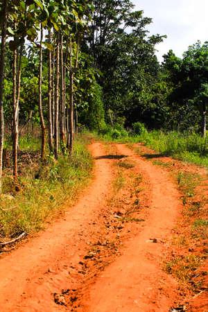 dirt road photo