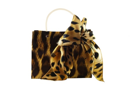 Female handbag and silk scarf of colouring of a leopard on a white background photo