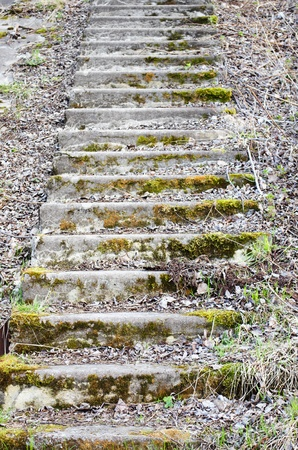 conducts: The old grassed ladder which conducts upwards