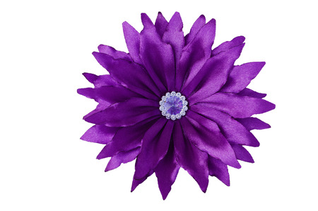 aster flowers: Artificial handmade flower, isolated on white background