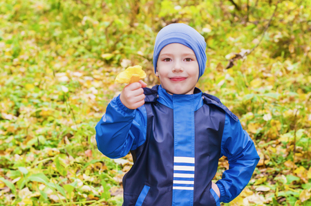 mushrooming: A boy stands in the forest with a cheerful face, looking into the camera and holding a mushroom chanterelle